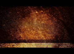 Light and Night (VinceFL) Tags: longexposure abstract nikon noflash nightlight manfrottotripod tamronaf7030mmf456dildtelephotomacrolens nikond7000 vincefl