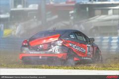DIS-CTSCC-Race-2013200
