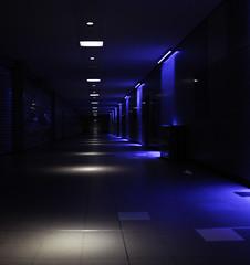 Charleroi station I (Edgar Barreira) Tags: lighting blue hall dof publictransportation belgium trainstation charleroi