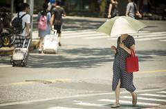 lifeinthehigh30s 8 (matteroffact) Tags: shanghai china asia heat heatwave celcius fahrenheit hot temperature summer umbrella hell hades street puxi jing an jingan district humid nikon d800 d800e andrew rochfort andrewrochfort matteroffact shade sweat