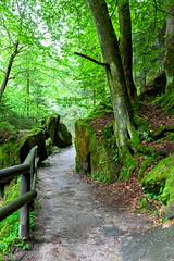 160524_163851_AB_4618 (aud.watson) Tags: europe czechrepublic bohemia decindistrict hrenska riverkamenice kamenicegorge edmundgorge gorge ravine river water rocks rockformation cliffs