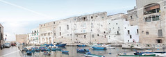 Monopoli's Port (Point .RAR) Tags: pointrarstudio pointrar point rar photovideoeditor photoeditor videoeditor photo video editor monopoli panoramicview panoramic view port travelaroundtheworld travelarounditaly arounditaly italy puglia travelling travel summertravel summer boat boats sealife sea life bluecolour blue colour summerweather summerbeauty beauty beautiful place places weather vibes beautifulplace summershoot travelshoot shoot wideangle zoom focus exposure photooftheday picoftheday followforfollow followme follow me