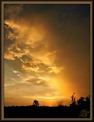 I'm UNclear (WanaM3) Tags: wanam3 sony a700 sonya700 texas houston elfrancoleepark park sunlight vista twiligth civiltwilight