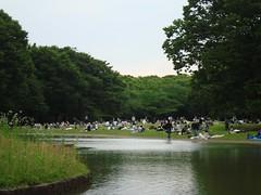 2016-06-04 - Tokyo, Yoyogi-koen - DSC00839 (julien_78) Tags: tokyo yoyogikoen