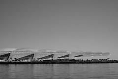 Museu do Amanha, Rio de Janeiro. (Rod.T28) Tags: leica leicasummilux50mm14typeii summilux leitz vintagelenses germanlens sonya7ii mirrorless riodejaneiro brazil praamau bw blackandwhite baiadeguanabara museudoamanh tomorrowmuseum arquitetura architecture