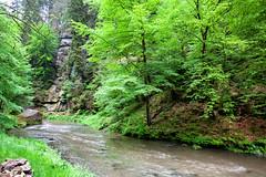 160524_160708_AB_4593 (aud.watson) Tags: europe czechrepublic bohemia decindistrict hrenska riverkamenice kamenicegorge edmundgorge gorge ravine river water rocks rockformation cliffs