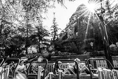 Matterhorn Noir (Tyler Bliss) Tags: bobsleds matterhorn disneyland walt disney world steel coaster noir tylerbliss sun ride nikon sunburst attraction burst roller annualpass imagineer mickey mouse fantasyland tomorrowland explore