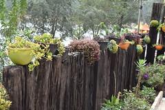 Munnar - Breath Taking Spots (Dinesh flicks) Tags: munnar munnarphotos munnarscenaries munnartouristspot devikulam topstation amaravathidam chinnarwildlifesanctuary thekkady dinesh photography kerala