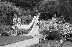 Neil & Hannah (7) (Sheptonian) Tags: woman wife blackandwhite mono wedding happy sun day summer