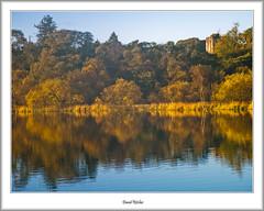 Autumn Morning Gold At Mugdock (flatfoot471) Tags: 2005 autumn castle dawn landscape mugdock normal rural scotland stirlingshire unitedkingdom gbr