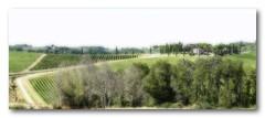 Toscane (jldum) Tags: italie italia toscane paysage flou landscape worldwidelandscapes