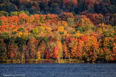 Is It Fall Yet? (Samantha Decker) Tags: berkshirecounty berkshires canoneos6d ma mass massachusetts newengland samanthadecker stockbridge tamronsp150600mmf563divcusd autumn fall telephoto