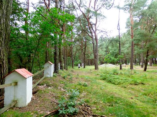 Inowłódz - Russian war cemetery, WWI (7)