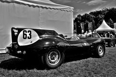 D-Type (Torquemada1965) Tags: dtype jag jaguar hdr