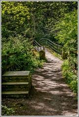 Woodland walk over the river Goyt. (explore 28-09-16) (ro-co) Tags: fz200 panasonic goytvalley bridges woodland