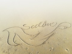 #salim #beach #pic #art #words #photo #photograph #painter #paint #like #me #follow #followforfollow #muslim #myname #name #cool (muhammadsalimrazaattari) Tags: myname me beach words paint painter pic muslim photo followforfollow like follow photograph art salim name cool