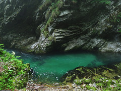 20120609_06 The lovely Vintgar Gorge, Slovenia - I found it in a random way! (ratexla) Tags: travel summer vacation favorite holiday travelling green nature water beautiful river landscape cool scenery europe earth scenic clear slovenia backpacking journey rivers slovenija traveling epic vatten interrail semester 2012 floder interrailing landskap tellus vintgargorge catchycolorsblue flod eurail radovna soteskavintgar slovenien tgluff republikaslovenija europaeuropean almostanything blejskivintgar tgluffning tgluffa unlimitedphotos ratexla eurailing photosbyjosefinestenudd photophotospicturepicturesimageimagesfotofotonbildbilder theeternityset canonpowershotsx40hs 9jun2012 ratexlasinterrailtrip2012 bledgorge resaresor tgresatgresor