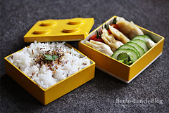 wantan-lego-bentobox (Token-Bento) Tags: rice lego box tofu peanut wonton bento lunchbox bentobox wantan obento furikake