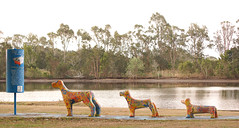 Three dogs (judith511) Tags: school lake sign by kids three locals odd dogsculpture colourfulpainted