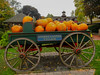 Pumpkin cart (pianoforte) Tags: store yankeecandle southdeerfield southdeerfieldma massachusettsflagship