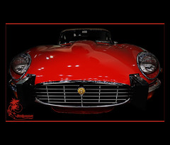 The Cat (ilandman4evr) Tags: classic cars details chrome jaguar custom coupe carshow etype houstonautorama d7000 nikonflickraward ilandman4evr