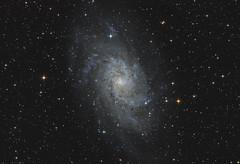 Triangulum Galaxy - Messier 33 (Betelgeuse93) Tags: austria tirol ngc astro astrophotography messier tyrol newton betelgeuze eq6 8f4 simongroslercher betelgeuse93