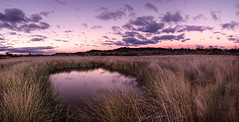 Jerusalem Creek pond (cp991) Tags: pink sunset nature clouds reflections reeds landscape pond nikon purple dusk australia swamp grasses marsh colourful atmospheric marshes twilght jerusalemcreek cameronpitcherphotography cp991