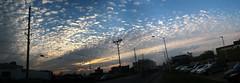 "Altocumulus ""mackerel sky"", scattered clouds over Cyrville Road, Ottawa East. (Steve Brandon) Tags: sunset sky autostitch panorama cloud ontario canada clouds geotagged mackerel dusk widescreen ottawa ciel nuages valuevillage altocumulus  mackerelsky    ottawaphotography  altocumulusmackerelsky   ottawaeast mackerelclouds ottawaphotographer cyrvilleroad ottawaest"