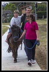 Ben having ride on Shetland Pony-1= (Sheba_Also 12 Millon Views-40,000 uploads) Tags: pony benjamin shetland