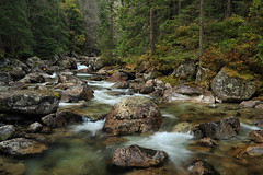 Studeny Potok (rgarrigus) Tags: trees forest river landscape rocks stream rocky pines slovakia runningwater larches mountainous flowingwater vysoketatry greatphotographers garrigus studenypotok robertgarrigus tatranskalesna robertgarrigusphotography velkestudenadolina tatrasmountainsnationalpark