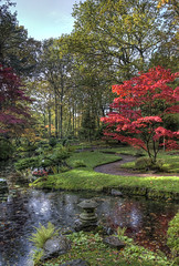 """Zen Autumn • <a style=""""font-size:0.8em;"""" href=""""http://www.flickr.com/photos/45090765@N05/8142483643/"""" target=""""_blank"""">View on Flickr</a>"""