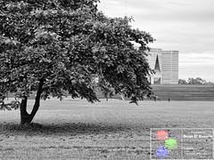 View Blocker (Brian D' Rozario) Tags: morning blackandwhite bw grey nikon gloomy gray desaturated dhaka grayscale 50mmf18d bangladesh greyscale colorblind colourblind farmgate d7k d7000 manikmiahavenue briandrozario brian19869 khamarbari