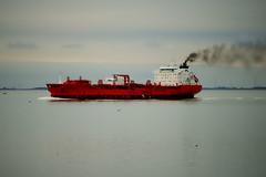 BOW FAGUS (Alain G G) Tags: holland boat ship vessel schelde tanker terneuzen escaut bowfagus