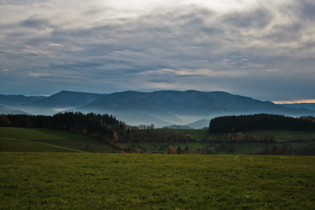Freiburg - Black Forest