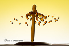 Water sculpture (Nigel Dell) Tags: winter waterdrops ngdphotos