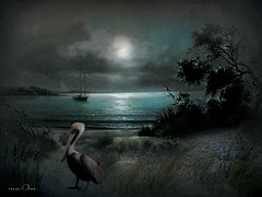 Blue lonely night (maom_1 (Off, most of the time)) Tags: artistictreasurechest artistictreasurefinest karasclassics thelookorangelevel3 thelookredlevel1 thelookyellowlevel2 thelookpurplelevel4