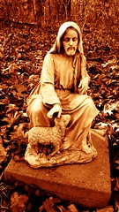 tender and true (LauraSorrells) Tags: love true sepia truth peace christ transformation conversion god quote kentucky jesus voice lamb christianity kindness statuary speech contemplative pilgrimage tender speaking tenderness transfiguration 2012 paulofreire gethsemani
