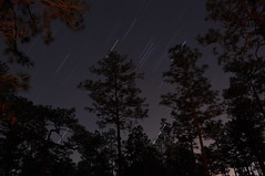Star Trails - Eglin Range Complex, Florida (fisherbray) Tags: camping usa lake water night see nikon wasser unitedstates florida orion airforce usaf crestview duckpond eglin startrail eglinafb orionsbelt vle okaloosacounty d5000 fisherbray eglinrangecomplex