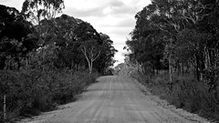 Turon camp 21-1-13 to 27-1-13 ROAD IN 1 (smortaus) Tags: friends summer blackandwhite bw alex by landscape ian outdoors photography this town is photo bush jeep offroad photos d sony manly australian january tracks australia 4wd wideangle images rosco national f nsw toyota cherokee gps kia alpha myphotos park 4wheeldrive the australian myimages australianimages river australianlanscape a65 tracks 2013 capertee photography a350 water of australia on rivers australianphotos landscapes smortaus dannyhayes crossings photosfromaustralia australiabest australianblackandwhite sonya65 nsw turon danielfhayes1962nswaustralia photosbydannyhayescopyright2013nswaustralia australianswphotos hayes1962home