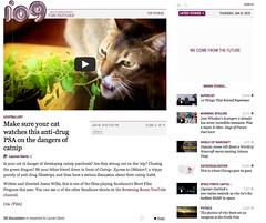 io9 - Catnip: Egress to Oblivion?