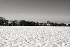 Black and White - Snow and Sky (Rovers number 9) Tags: uk winter england snow minolta january lancashire chorley a65 2013 euxton minoltaaf28135mmf445 sonya65 jan2013