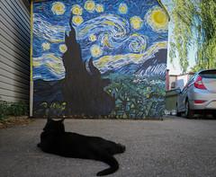 The Alleyway of Dreams (BruceK) Tags: night graffiti mural starrynight vincentvangogh thealleywayofdreamsmarkkerwindanforthtoronto