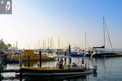 Waiting in Lahaina. (House_of_M) Tags: lahaina hawaii cruiseship cruise maui goldenhour catamaran yachts
