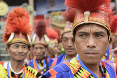The tribes of Nagaland celebrate their fomus hornbill festival. (Tapas Ghosh Photography) Tags: nagaland tribal indiantribe cultural travelphotography travel portrait face color colorful journey life nagatribe tradition dress hunter wild northeast india incradibleindia tribalofindia hornbill hornbillfestival naga warriors
