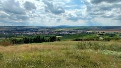 Gau-Odernheim und Donnersberg