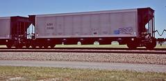 AZEX 23100 coal hopper-Northport, Nebraska. (Wheatking2011) Tags: azex coal hopper arizona electric copperative union pacific railroad northport nebraska