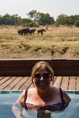 Zambia_LionCamp_292_elephant (atkiteach) Tags: zambia southluangwanationalpark southluangwa safari safaricamp camp nature naturereserve holiday rural africa lioncamp elephant elephants