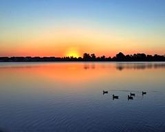 Morning Has Broken (DASEye) Tags: davidadamson daseye iphone sunrise dawn ducks duck glow lake virginiabeach virginia va water reflected reflections reflection
