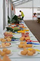 Prizewinning Produce