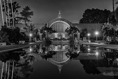 Blue Reflection B&W (Bob Kirschke) Tags: balboapark sandiego